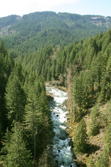 The Wind River Gorge is surrounded in Pacific Northwest rich forests and contains some of the best rapids in the country.